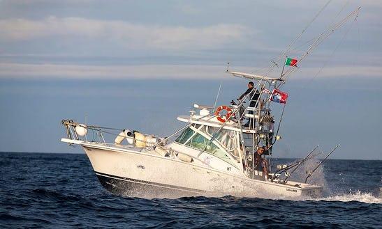 Enjoy Fishing In Madalena, Portugal On 32' Luhrs Sport Fisherman