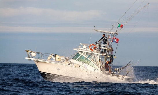 Enjoy Fishing In Madalena, Portugal On 32' Luhrs Sport Fisherman