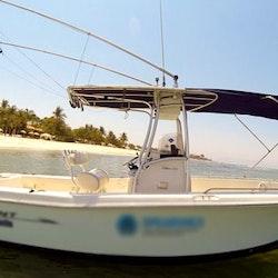 24ft spearo 3 fishing charter in punta de mita mexico for Punta mita fishing