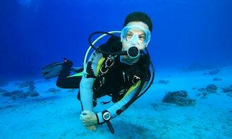 Book the Open Water Diving Course in Porto Cesare, Puglia