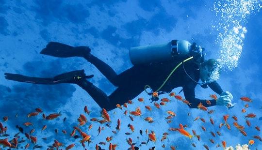 Diving And Snorkeling Trips In Mahébourg, Mauritius