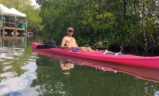 Single Kayak Rental In Matlacha, Florida