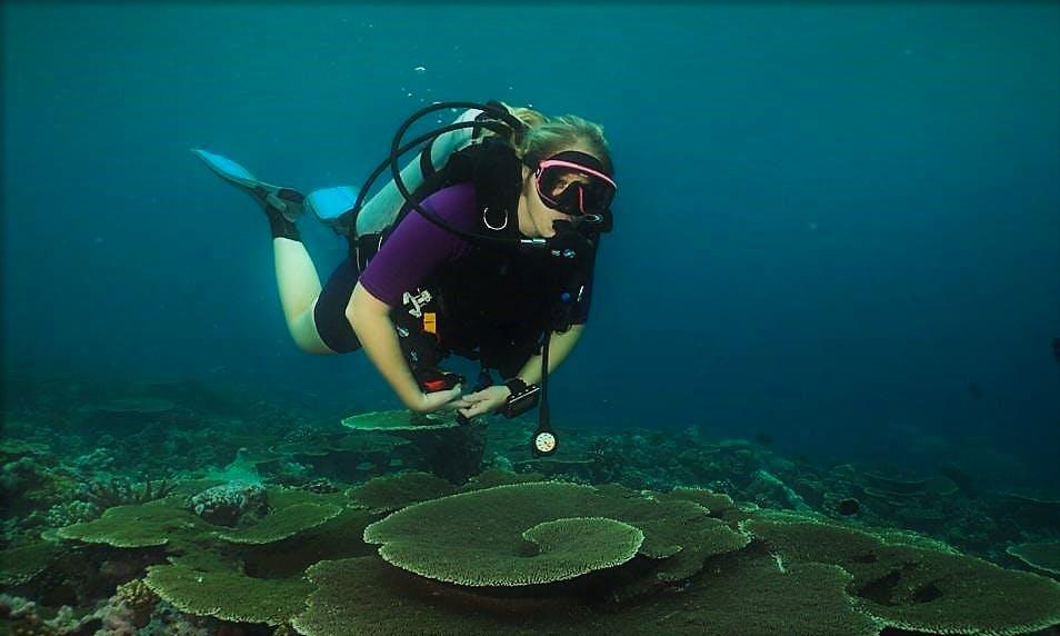Enjoy Diving Courses in Otopeni, Romania
