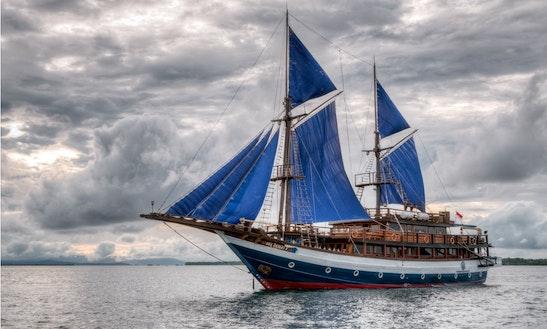 Sailing Sea Safari 8 Schooner Diving Liveaboard Cruises In Indonesia