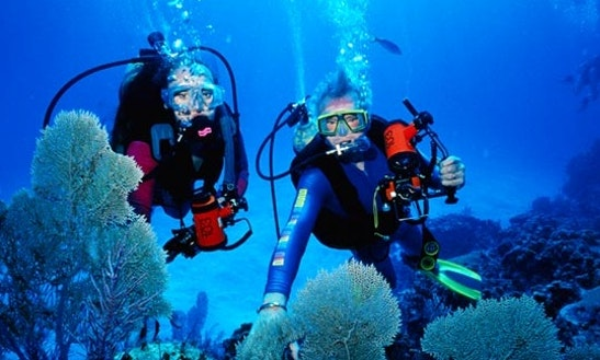 Enjoy Diving Lessons And Trips In Limasol, Cyprus