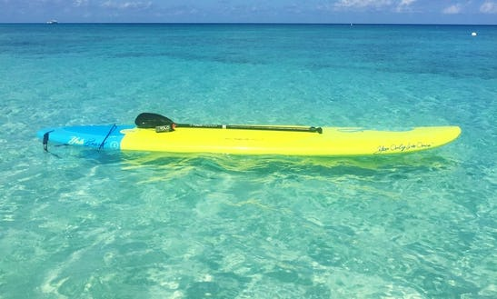Enjoy Stand Up Paddleboard Rentals In George Town, Cayman Islands