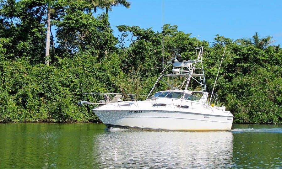 """41' Sea Ray Sportfisher  """"SUN BREEZE""""  in Hopkins , Belize"""