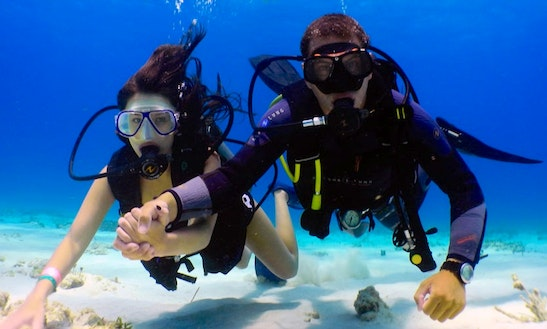 Enjoy Diving Trips In Keşan, Turkey