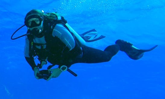 Enjoy Diving Courses And Trips In Provincia De Guanacaste, Costa Rica
