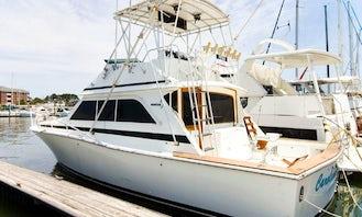 38' Motor Yacht Charter in Norfolk, Virginia