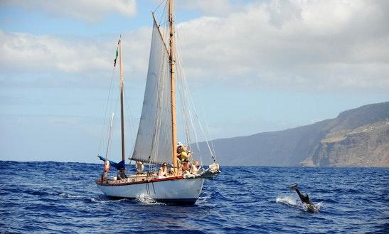 Charter A Ilheu Gulet In Lombo Do Doutor, Madeira