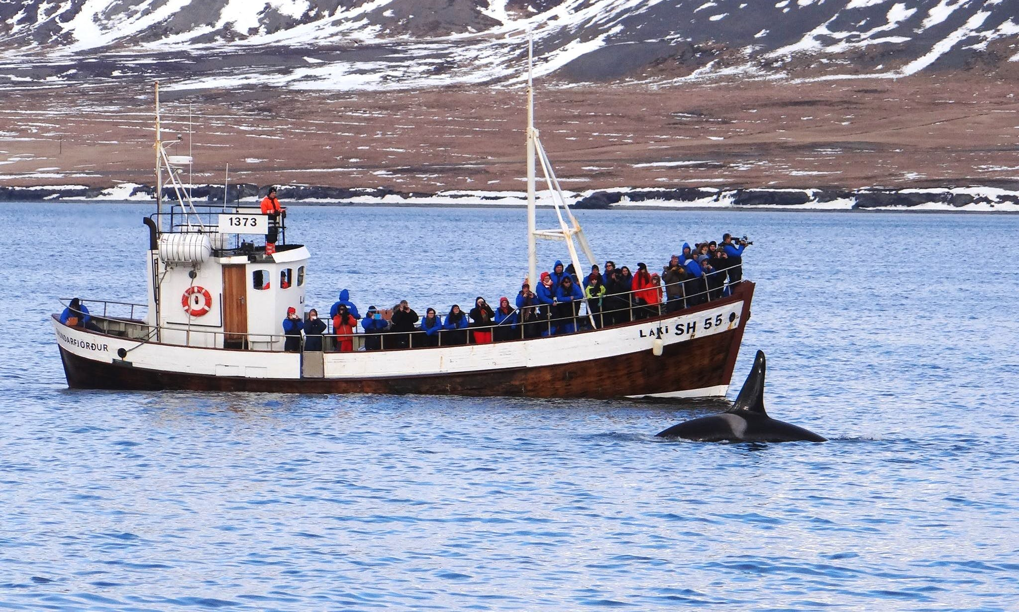 Enjoy Whale Watching in Grundarfjörður, Iceland on Láki SH55 Trawler