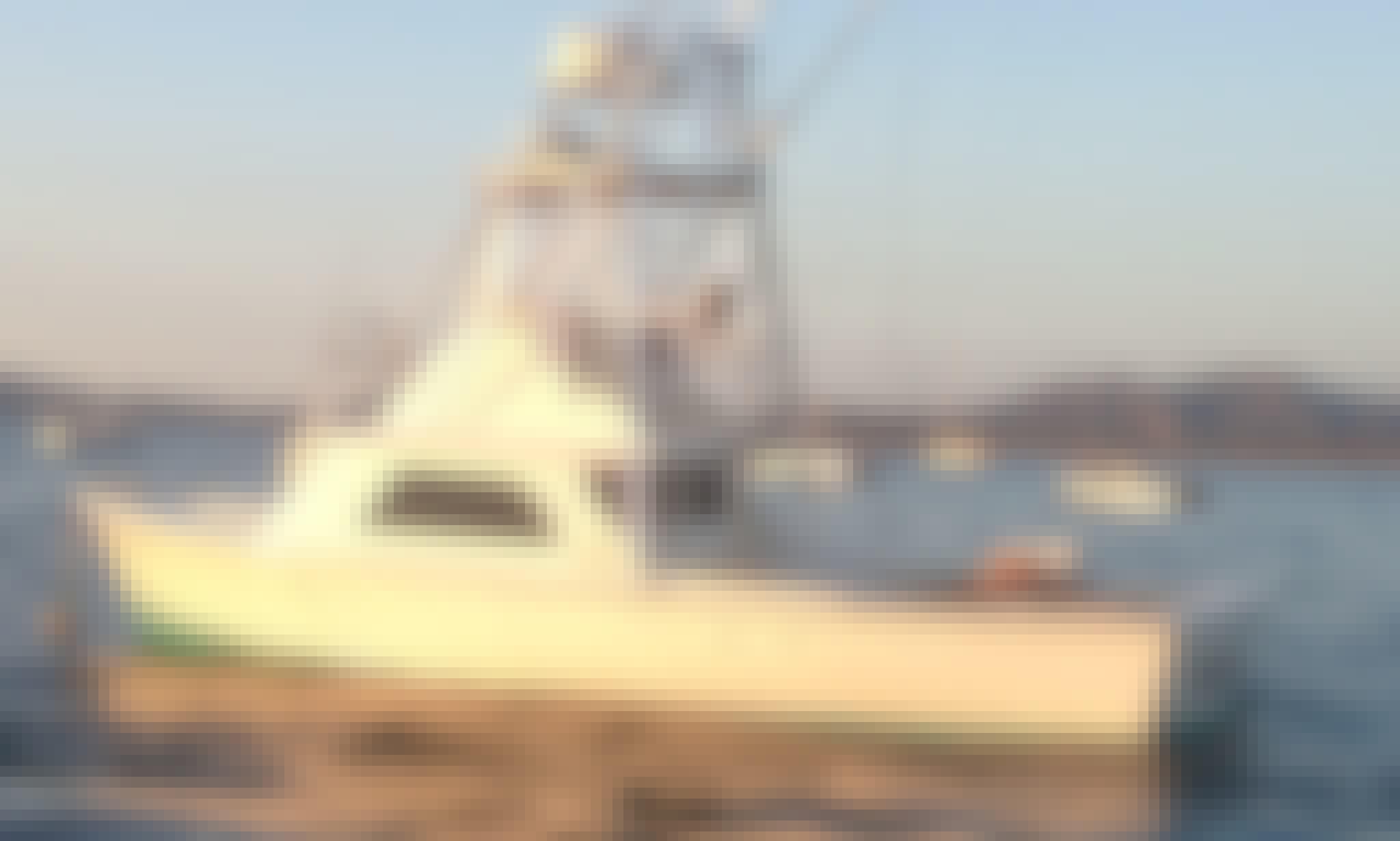 """Fishing Charter On 31ft """"Bachata"""" Bertram Yacht In Tamarindo, Costa Rica"""
