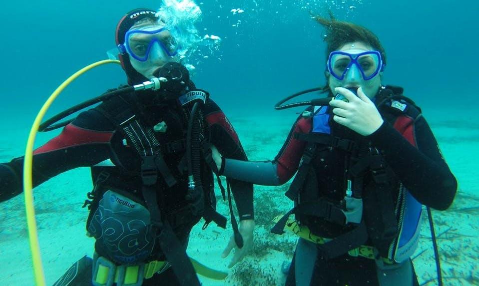 Enjoy Diving Trips in Isola Delle Femmine, Italy