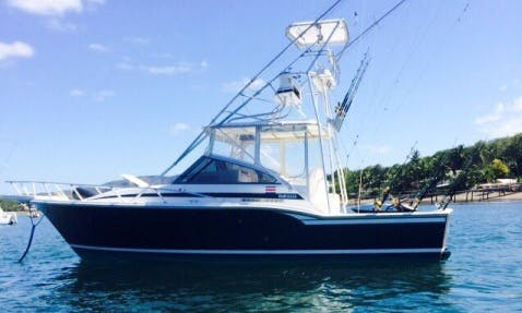 33'  Blackfin Express Sports Fisherman in Playa Flamingo, Costa Rica