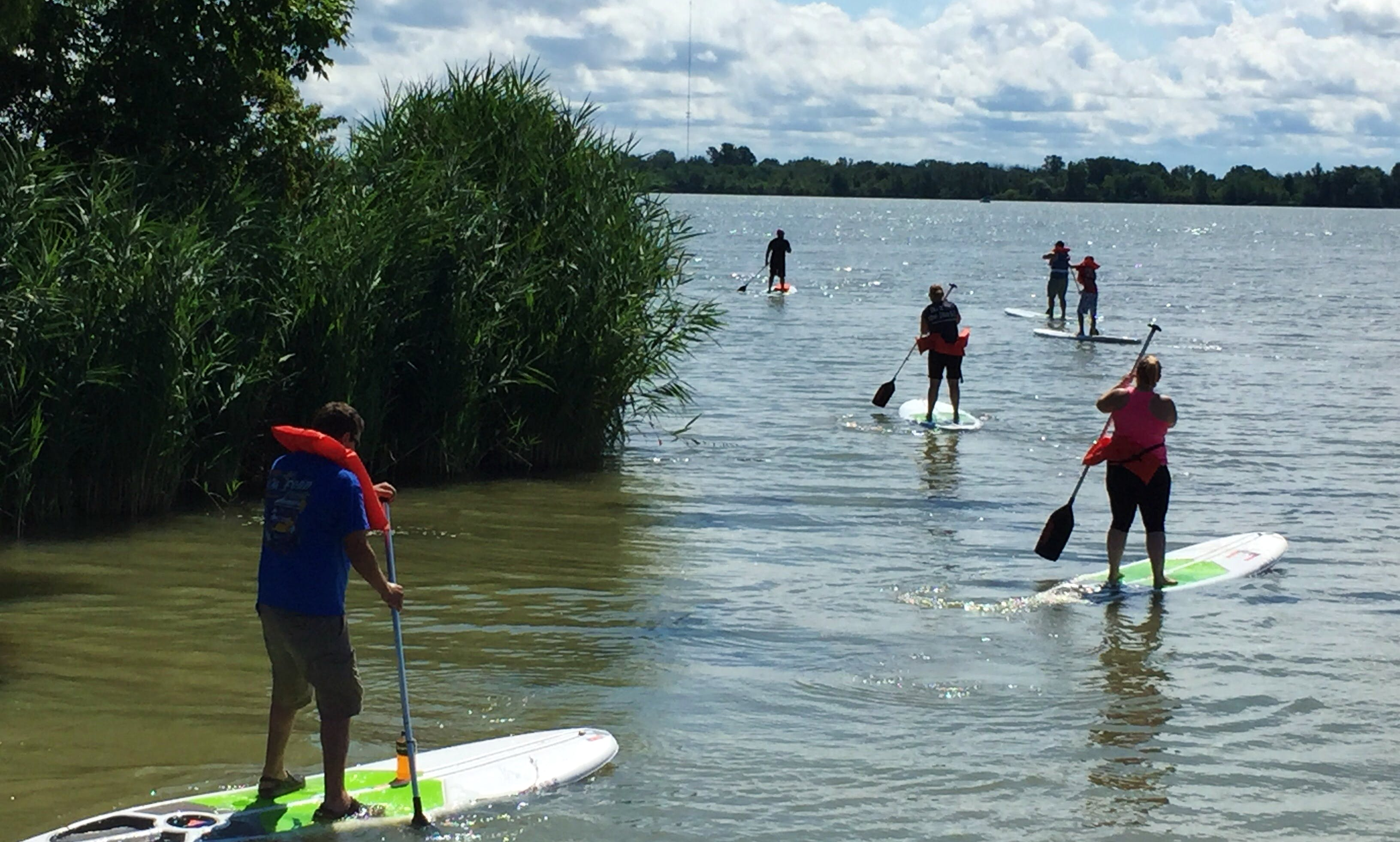 Paddleboard for rent in Port Clinton