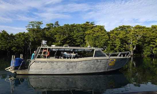 Enjoy Diving Trips And Courses In Pacific Harbour, Fiji