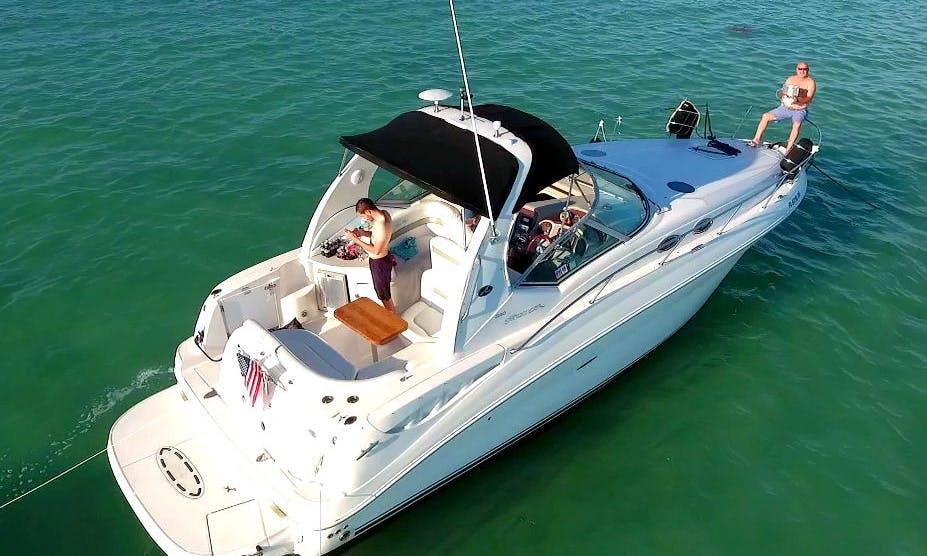 Charter 32' Sea Ray Sundancer Motor Yacht In Miami, Florida