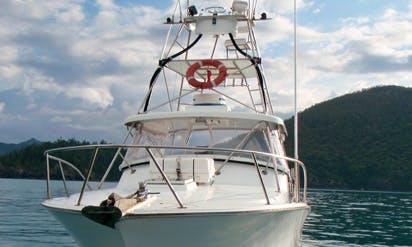 """Enjoy Fishing at Airlie Beach, Queensland on 32' """"Reel Work"""" Sport Fisherman"""