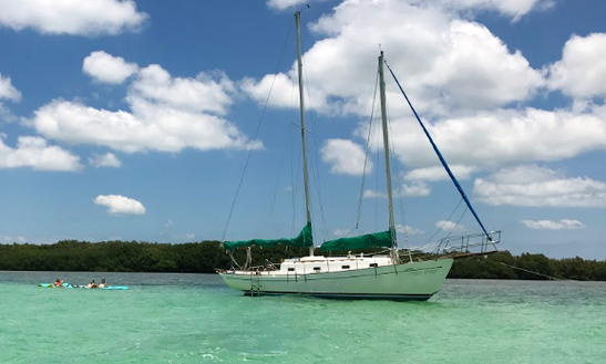 Sailing Charter On 37ft