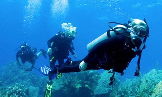Enjoy Diving Courses In Sozopol, Bulgaria