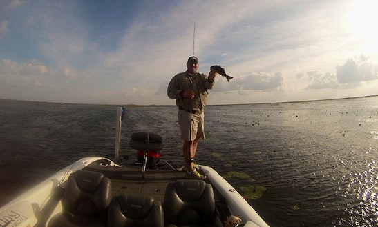 Go Fishing On Triton 200xp Bass Boat With Captain Wes In South Florida