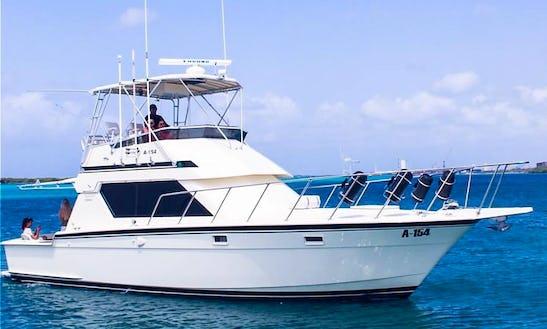 Rent A Motor Yacht In Oranjestad, Aruba