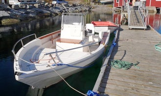 Enjoy Fishing in Mohelnice on 23' Center Console