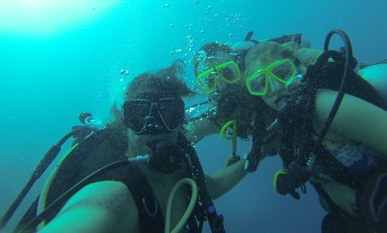 Enjoy Diving In Oranjestad, Aruba