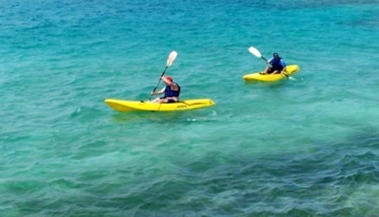 Rent A Single Kayak And Explore The Beaches In Noord, Aruba