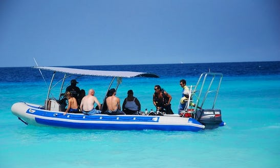 Great Prices For Diving In Kendwa, Tanzania