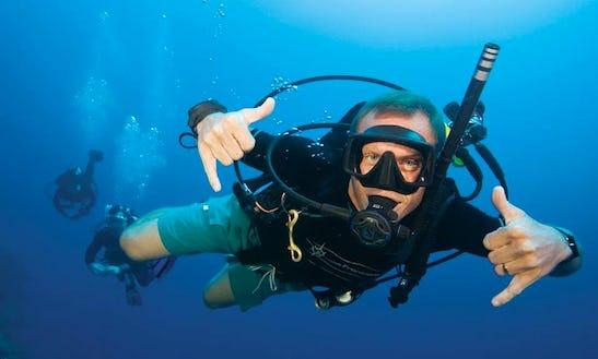 Enjoy Diving In Rotterdam, Netherlands