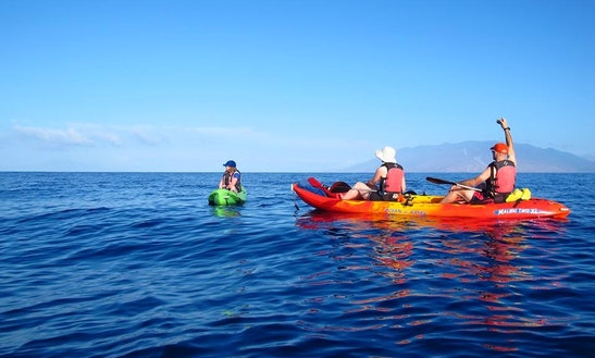 Tandem Kayak Rental In Kihei, Hawaii