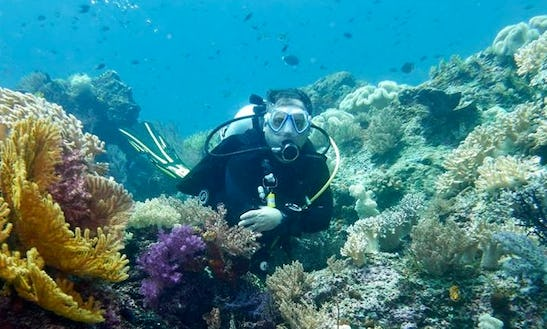 Enjoy Diving Trips And Courses In Nice, France