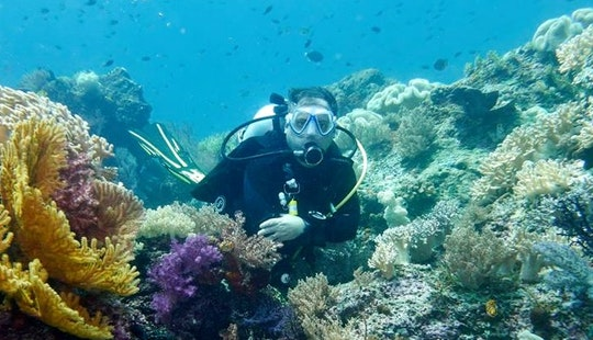 Diving Trips And Courses In Nice, France