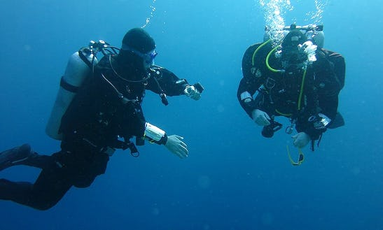 Enjoy Diving Courses In Hel, Poland