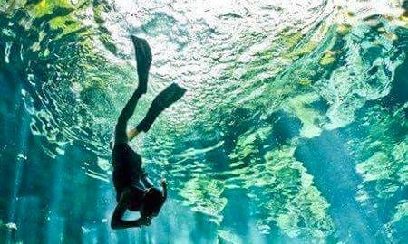 Snorkeling Trips in Mombasa, Kenya
