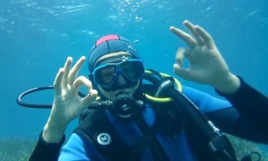 Enjoy Diving Trips And Lessons In La Seyne-sur-mer, France