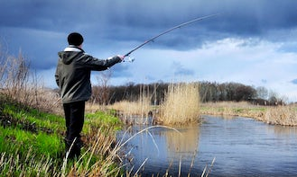 Enjoy Fly Fishing in Orléans, France