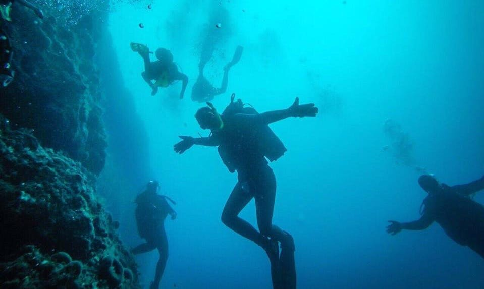 Enjoy Diving in Ohrid, Macedonia