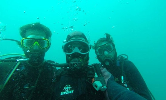Enjoy Diving Trips In Toliara Province, Madagascar