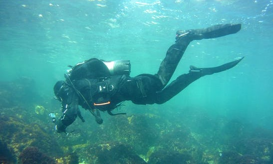 Enjoy Diving Trips In Dobrich, Bulgaria