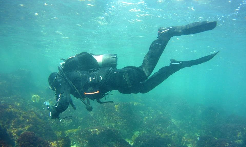 Enjoy Diving Trips in Dobrich, Bulgaria
