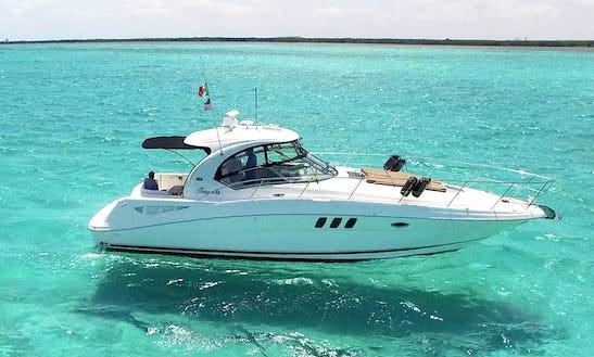 40' Searay Sundancer  Motor Yacht In Cozumel Mexico