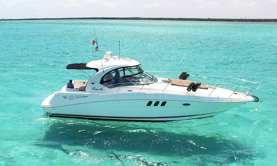 40' Searay Sundancer  Motor Yacht In Cozumel Mexico