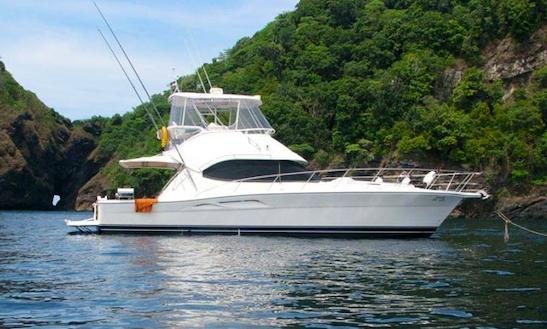 Charter 47' Riviera Flybridge Motor Yacht In Dubai, Uae