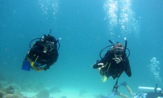 Enjoy Diving Trips In Labin, Croatia