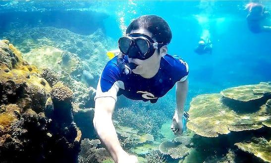 Enjoy Snorkeling Tours In Langkawi, Kedah