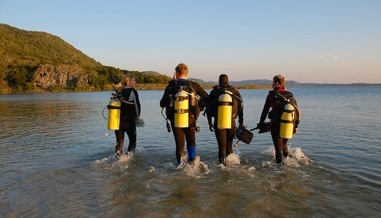 Enjoy Diving Trips And Courses In Lahinch, Ireland