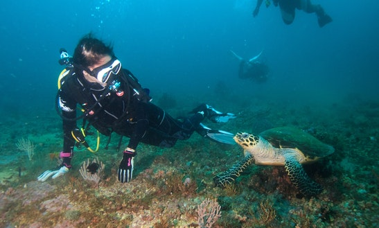 Enjoy Diving Trips In Antalya, Turkey